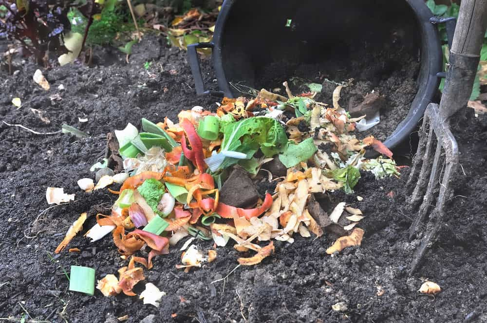 expired potting soil in compost